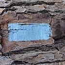 blue blazes by BamaWoods in Hammock Landscapes
