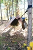Michigan Fall Hang 2010 by Dblcorona in Group Campouts