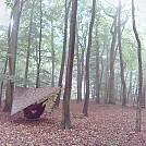 img 20170629 083552-1 by micks in Hammock Landscapes