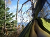 Sht Campsites by Sprite in Hammock Landscapes