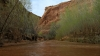 Coyote Gulch Backpacking