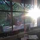 XLC Sun