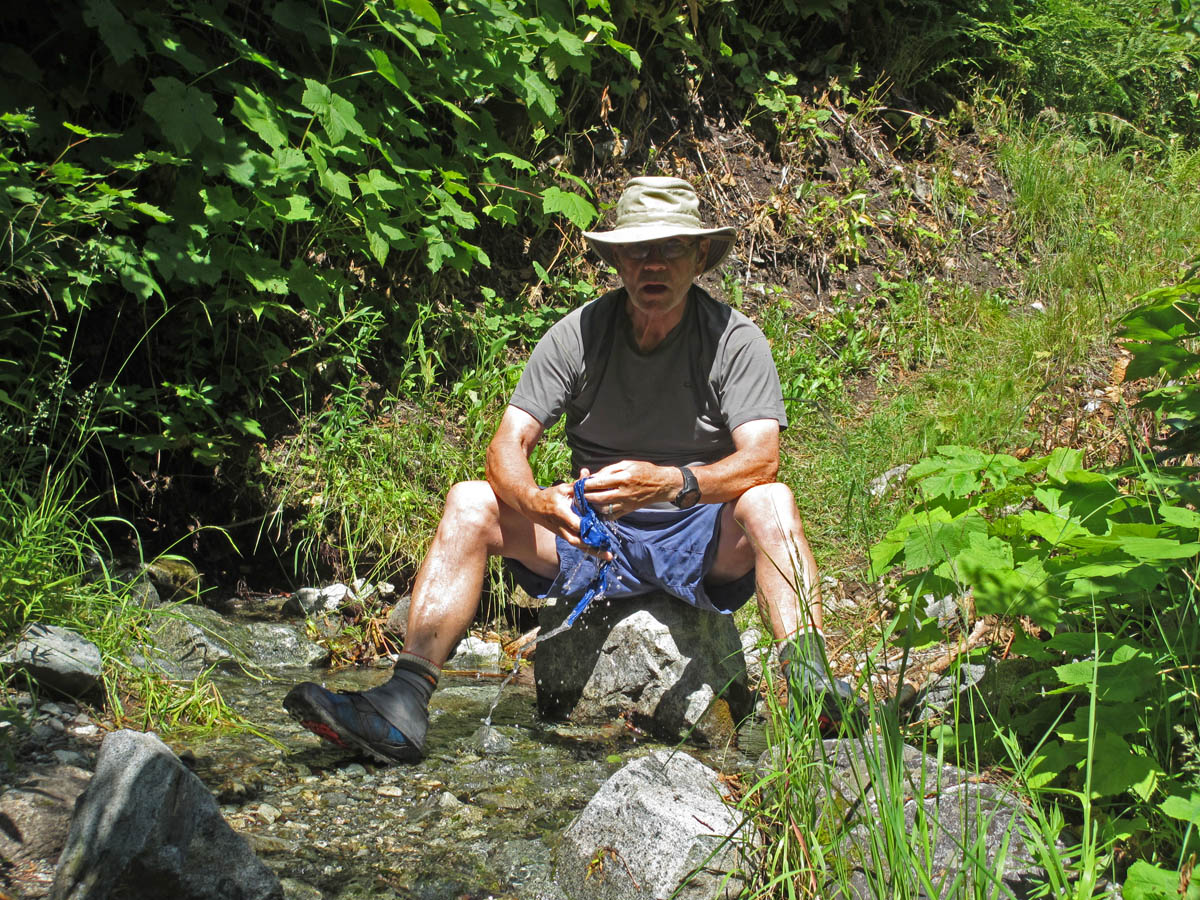 Cooling off at a stream