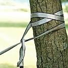 tree strap double wrap