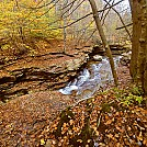 Yellow Dog Run, Old Logger's Path, PA by cmoulder in Hammock Landscapes