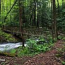 Red Run bridge near mile mark 47 Quehanna Trail Pa.