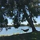 legg lake 2019 by lkk6783 in Hammock Landscapes