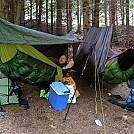 Hammocks on edge of woods by Iron Fist in Hammocks