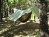 Mld Hex Hammock Tarp With Blackbird 1.0