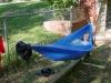 dixicritter's hammock