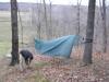 New hammock hanger