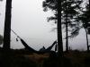 P1000326 by Highbinder in Hammock Landscapes