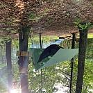 Hammock Camping SOMO