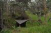 Tnc Honomalino by bkrownd in Hammock Landscapes