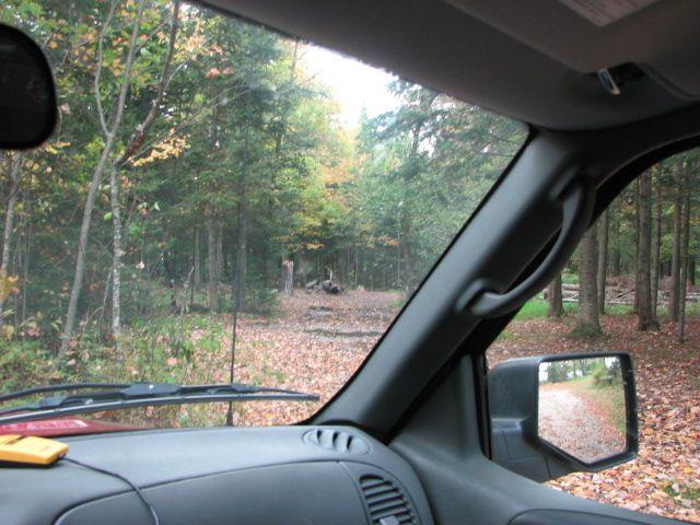 Adirondak Drive In Site Search