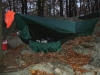 Harriman SP NY Nov by Sasquatch in Hammock Landscapes