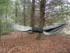 Custom Warbonnet Blackbird Photos by fin in Hammocks