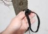Claytor No Net 1 - bowline