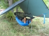 My Dd Hammock Setup by suddenfromaspudden in Hammocks