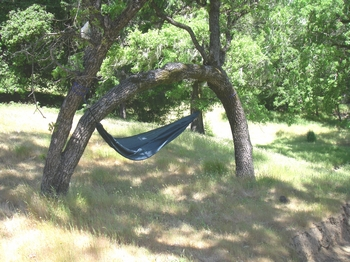 One Tree Hammock Hang