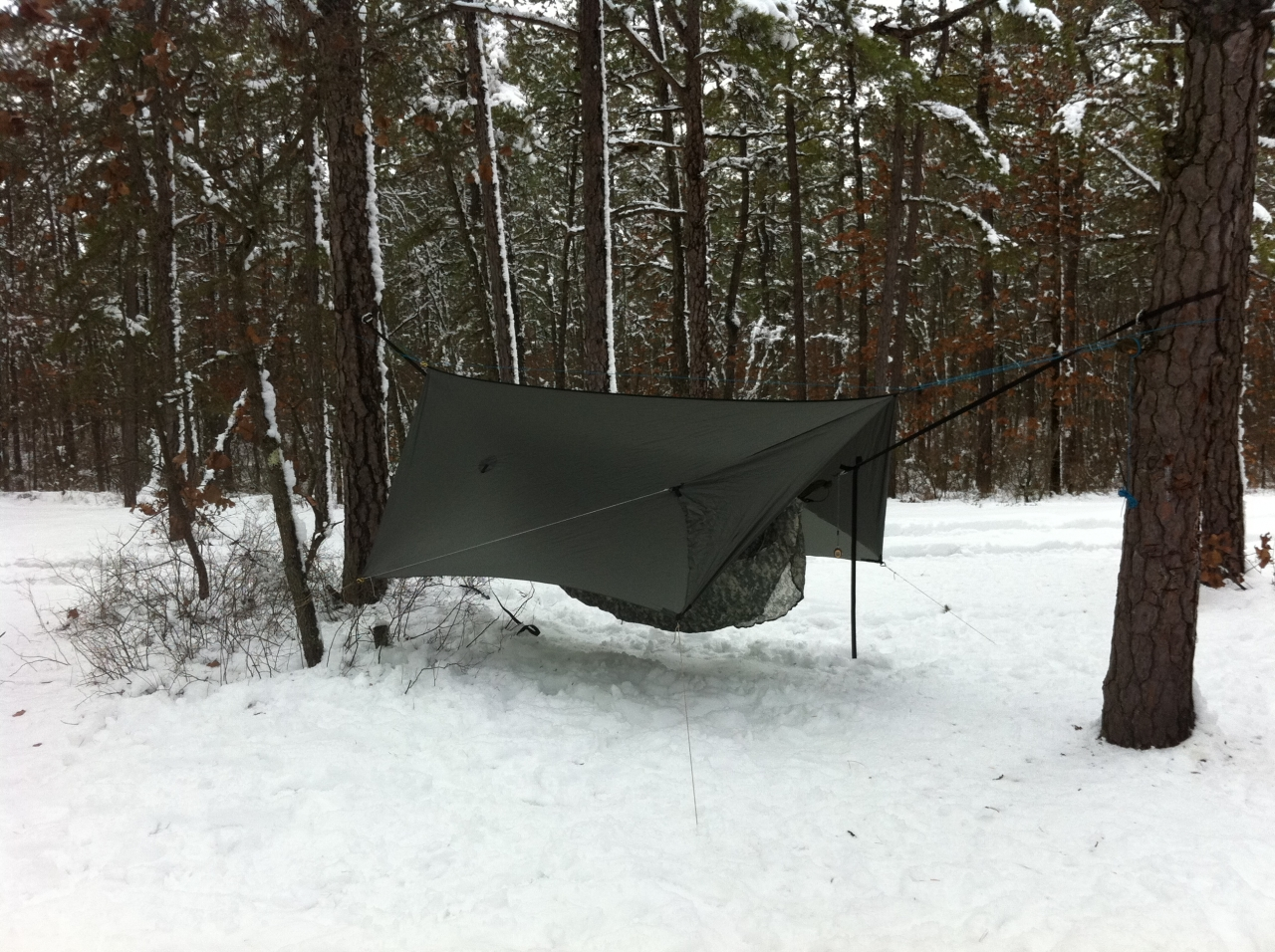 Bughunters Hammock Camping Photos