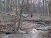 Stream Side by ticktock in Hammock Landscapes