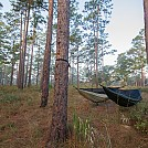 Twin hammocks by Nclarkii in Hammock Landscapes
