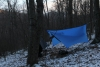 Tarp1 by Cold Butt Stephen in Hammock Landscapes